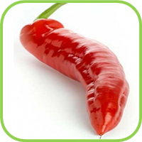 chillie cayenne