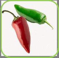 chillie- Jalapeno