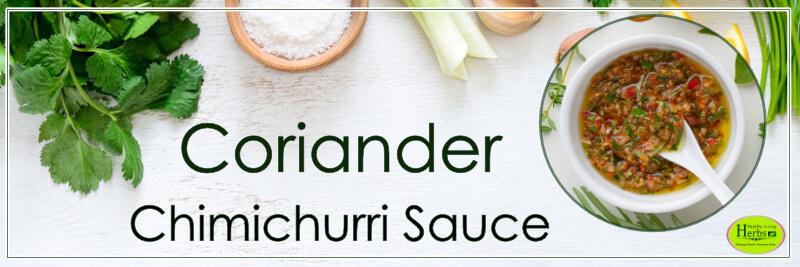 Coriander_Chimichurri_Sauce